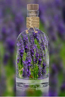 Could lavender and tea tree oil act as endocrine disruptors?